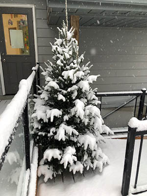 Daycare Snow Covered Christmas Tree