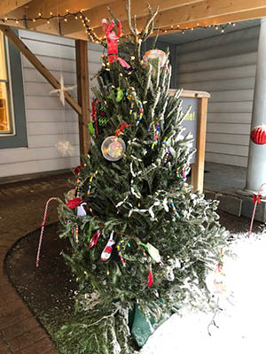 Decorated Tree in Daycare Playground